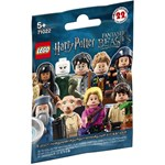 LEGO Minifigurina, Harry Potter si Fantastic Beasts 71022