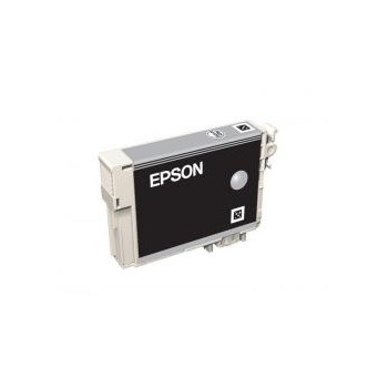 Epson T0967 - Cartus Imprimanta Light Black pentru Epson R2880