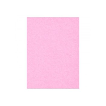 Creativity Backgrounds Carnation 17 - Fundal carton 2.72 x 11m