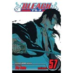 Bleach, Volume 57 (Bleach, nr. 57)