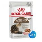 Pachet Royal Canin Ageing 12 + 24 x 85 g