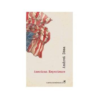 American Experience (ebook)