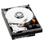HDD Server Fujitsu Hot Plug 2TB SATA3 7200rpm 3.5 inch S26361-F3815-L200