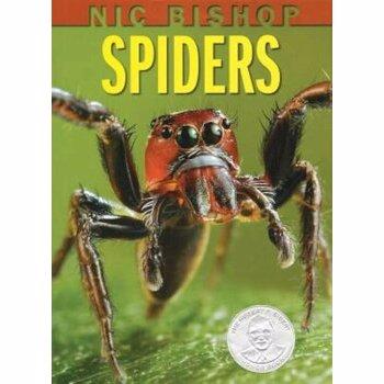 Nic Bishop Spiders, Hardcover