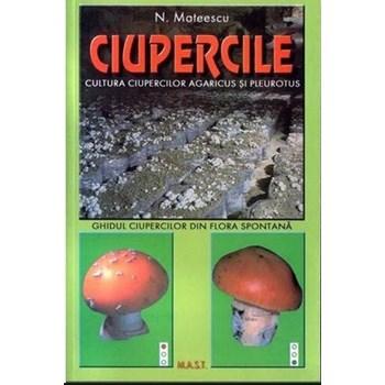 Ciupercile- Cultura ciupercilor agaricus si pleurotus