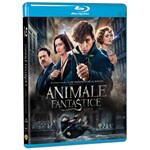 Animale Fantastice si unde le poti gasi (Blu Ray Disc) / Fantastic Beast and Wthere to Find Them