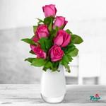 Buchet de 7 trandafiri roz
