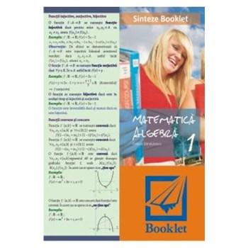 Sinteze booklet 1 - Algebra - Felicia Sandulescu