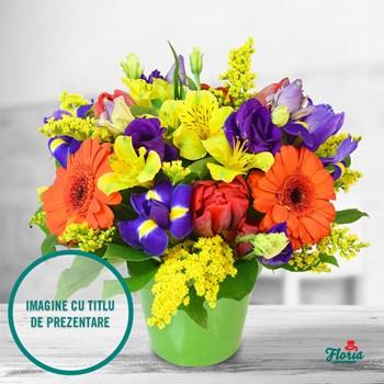 Aranjament floral - Aranjamentul zilei