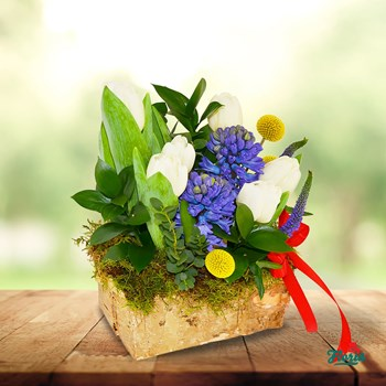 Aranjament floral - Aroma de primavara