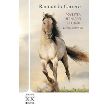 Povestea Bernardei Soledade - Raimundo Carrero