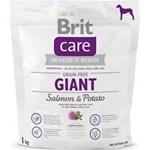 Brit Care Grain Free Giant Somon si Cartofi, 1 kg