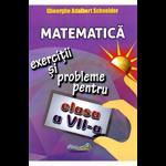 Matematica - Clasa 7 - Exercitii si probleme - Gheorghe Adalbert Schneider