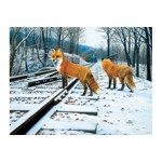 Puzzle SunsOut - Fox Tracks, 300 piese (Sunsout-48831)