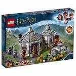 LEGO Harry Potter Coliba lui Hagrid, Eliberarea lui Buckbeak 75947
