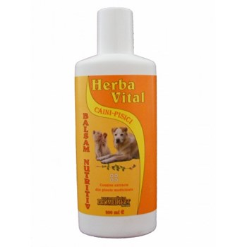 Balsam Herba Vital