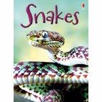Beginners Snakes - Usborne book (4+)
