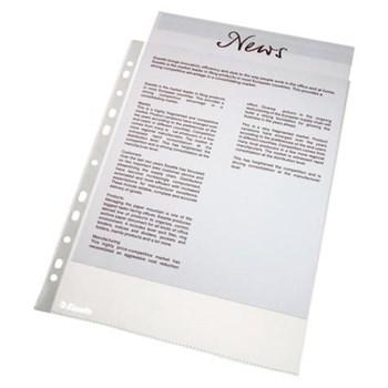 File plastic Esselte A4,orange peel, 25b