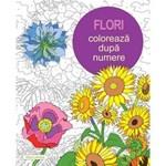 Flori: Coloreaza dupa numere, editura Didactica Publishing House