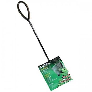 Mincioc Verde - 15 Cm