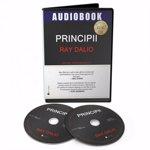 Audiobook. Principii