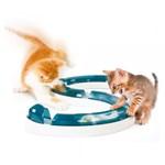Cat Senses Play Circuit