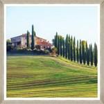 Tablou Framed Art Sunny Toscana