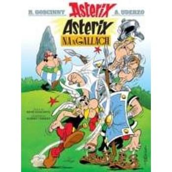 Asterix Na Ngallach (Irish) (Asterix in Irish)
