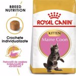 Hrana uscata pentru pisici Royal Canin, Maine Coon, Kitten, 2Kg