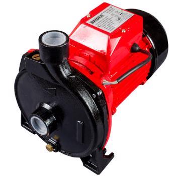 Pompa de suprafata Raider RD-WP158, motor electric, 750 W, 120 l/min debit