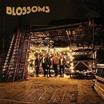 Blossoms - Vinyl