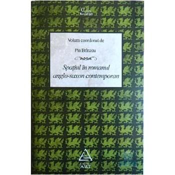 Spatiul in romanul anglo-saxon conteporan - Pia Brinzeu