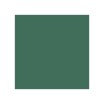 Colorama fundal carton 2.72 x 11m - Spruce Green