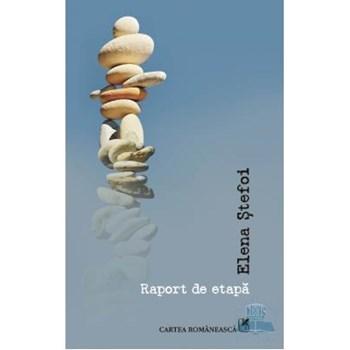 Raport de etapă